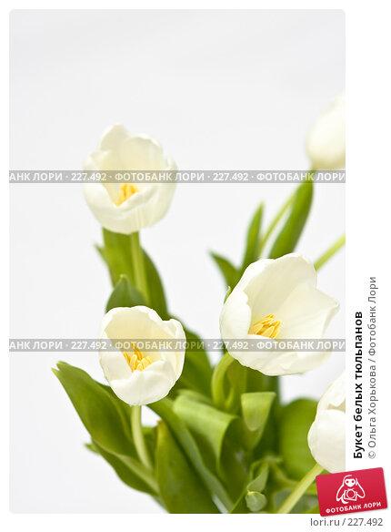 Букет белых тюльпанов, фото № 227492, снято 8 марта 2008 г. (c) Ольга Хорькова / Фотобанк Лори
