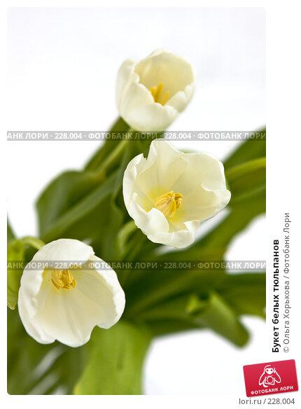 Букет белых тюльпанов, фото № 228004, снято 8 марта 2008 г. (c) Ольга Хорькова / Фотобанк Лори