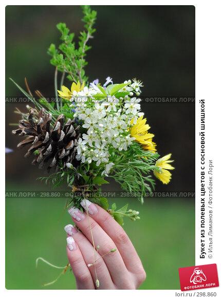 Букет из полевых цветов с сосновой шишкой, фото № 298860, снято 20 апреля 2008 г. (c) Илья Лиманов / Фотобанк Лори