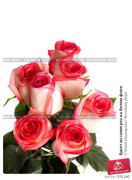 Купить «Букет из семи роз на белом фоне», фото № 316240, снято 16 марта 2008 г. (c) Юлия Кашкарова / Фотобанк Лори