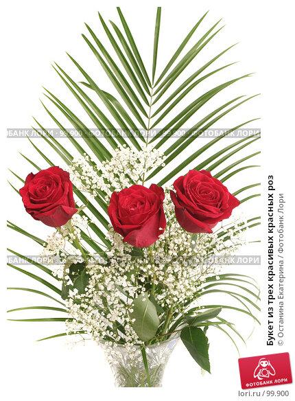 Букет из трех красивых красных роз, фото № 99900, снято 12 октября 2007 г. (c) Останина Екатерина / Фотобанк Лори