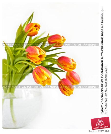 Букет красно-желтых тюльпанов в стеклянной вазе на белом фоне, малая глубина резкости, фото № 227996, снято 8 марта 2008 г. (c) Ольга Хорькова / Фотобанк Лори