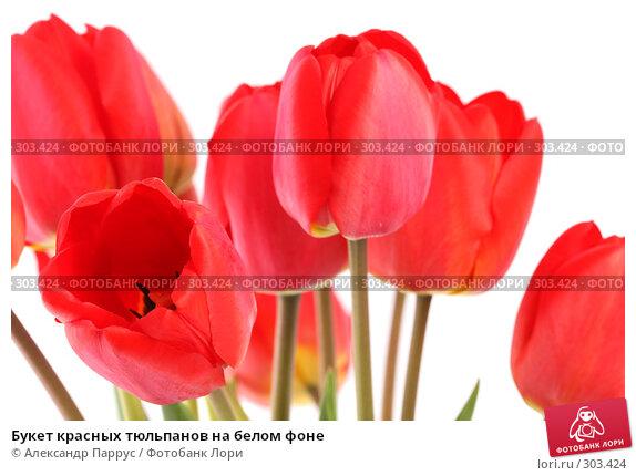 Букет красных тюльпанов на белом фоне, фото № 303424, снято 21 апреля 2008 г. (c) Александр Паррус / Фотобанк Лори