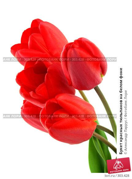 Купить «Букет красных тюльпанов на белом фоне», фото № 303428, снято 21 апреля 2008 г. (c) Александр Паррус / Фотобанк Лори