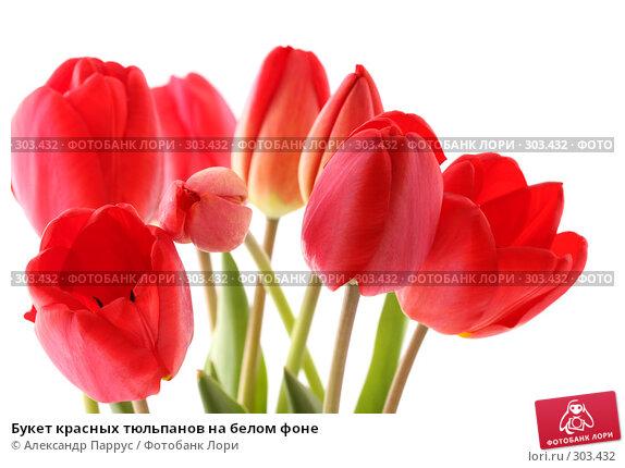 Букет красных тюльпанов на белом фоне, фото № 303432, снято 21 апреля 2008 г. (c) Александр Паррус / Фотобанк Лори