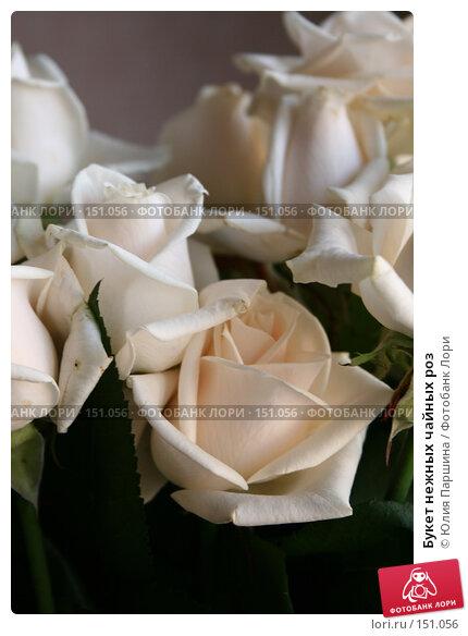 Букет нежных чайных роз, фото № 151056, снято 11 сентября 2007 г. (c) Юлия Паршина / Фотобанк Лори