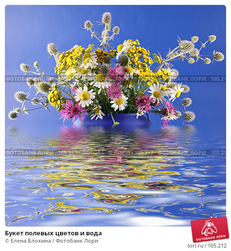 Букет полевых цветов и вода, фото № 105212, снято 22 августа 2017 г. (c) Елена Блохина / Фотобанк Лори