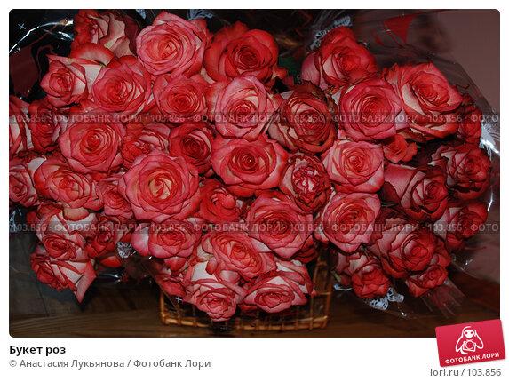 Букет роз, фото № 103856, снято 19 января 2017 г. (c) Анастасия Лукьянова / Фотобанк Лори