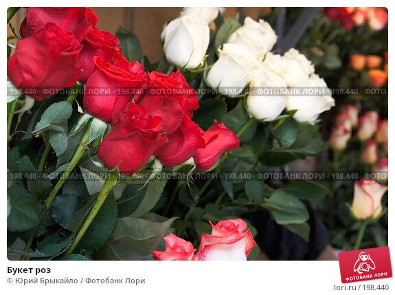 Букет роз, фото № 198440, снято 3 февраля 2008 г. (c) Юрий Брыкайло / Фотобанк Лори