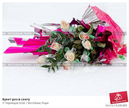 Букет роз в снегу. Стоковое фото, фотограф Чернецов Олег / Фотобанк Лори