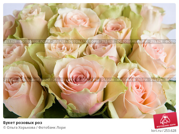 Букет розовых роз, фото № 253628, снято 8 марта 2008 г. (c) Ольга Хорькова / Фотобанк Лори