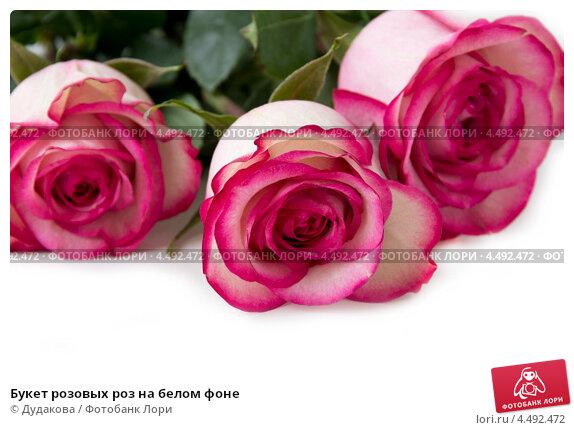 Купить «Букет розовых роз на белом фоне», фото № 4492472, снято 10 апреля 2013 г. (c) Дудакова / Фотобанк Лори