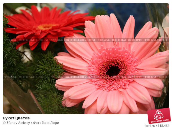 Букет цветов, фото № 118464, снято 30 июня 2006 г. (c) Efanov Aleksey / Фотобанк Лори