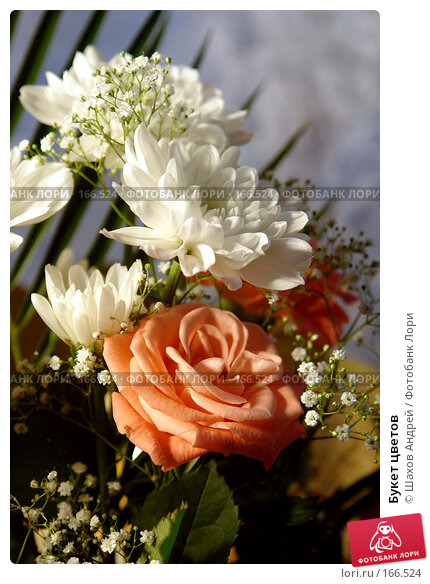 Букет цветов, фото № 166524, снято 10 июня 2006 г. (c) Шахов Андрей / Фотобанк Лори