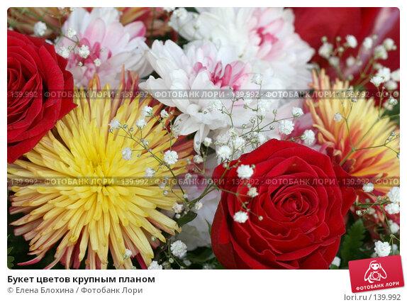 Букет цветов крупным планом, фото № 139992, снято 20 июля 2007 г. (c) Елена Блохина / Фотобанк Лори