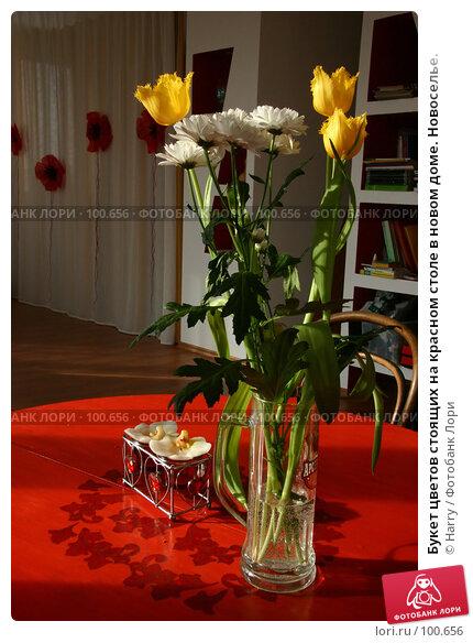 Букет цветов стоящих на красном столе в новом доме. Новоселье., фото № 100656, снято 28 февраля 2005 г. (c) Harry / Фотобанк Лори