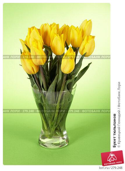 Купить «Букет тюльпанов», фото № 279248, снято 9 мая 2005 г. (c) Кравецкий Геннадий / Фотобанк Лори