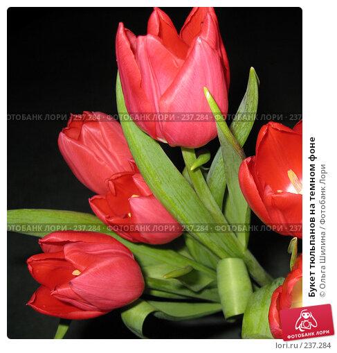 Букет тюльпанов на темном фоне, фото № 237284, снято 24 марта 2017 г. (c) Ольга Шилина / Фотобанк Лори