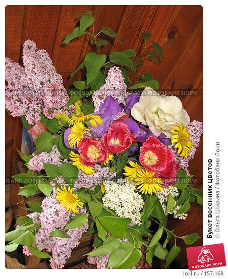 Букет весенних цветов, фото № 157168, снято 25 мая 2007 г. (c) Ольга Шилина / Фотобанк Лори