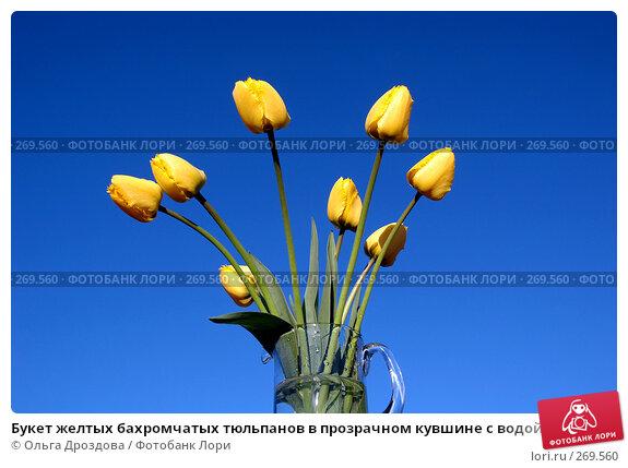 Букет желтых бахромчатых тюльпанов в прозрачном кувшине с водой на фоне чистого голубого неба, фото № 269560, снято 14 мая 2005 г. (c) Ольга Дроздова / Фотобанк Лори