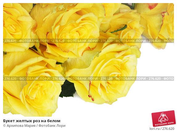 Букет желтых роз на белом, фото № 276620, снято 7 мая 2008 г. (c) Архипова Мария / Фотобанк Лори