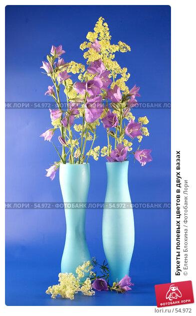 Букеты полевых цветов в двух вазах, фото № 54972, снято 22 июня 2007 г. (c) Елена Блохина / Фотобанк Лори