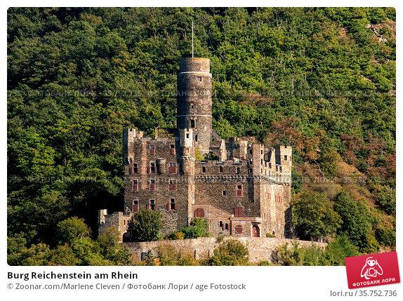 Burg Reichenstein am Rhein. Стоковое фото, фотограф Zoonar.com/Marlene Cleven / age Fotostock / Фотобанк Лори