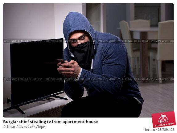 Купить «Burglar thief stealing tv from apartment house», фото № 28789408, снято 15 марта 2018 г. (c) Elnur / Фотобанк Лори