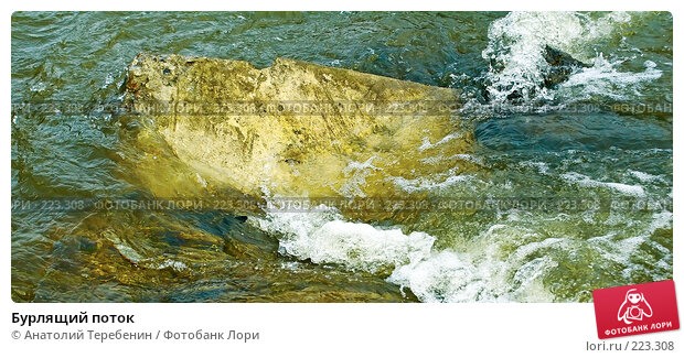 Бурлящий поток, фото № 223308, снято 1 марта 2008 г. (c) Анатолий Теребенин / Фотобанк Лори