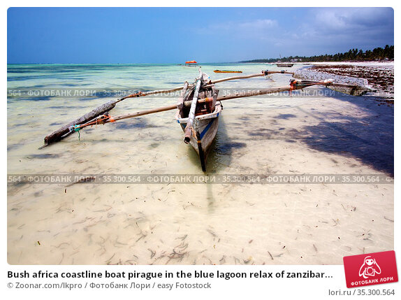 Bush africa coastline boat pirague in the blue lagoon relax of zanzibar... Стоковое фото, фотограф Zoonar.com/lkpro / easy Fotostock / Фотобанк Лори