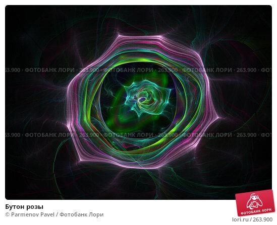 Бутон розы, иллюстрация № 263900 (c) Parmenov Pavel / Фотобанк Лори