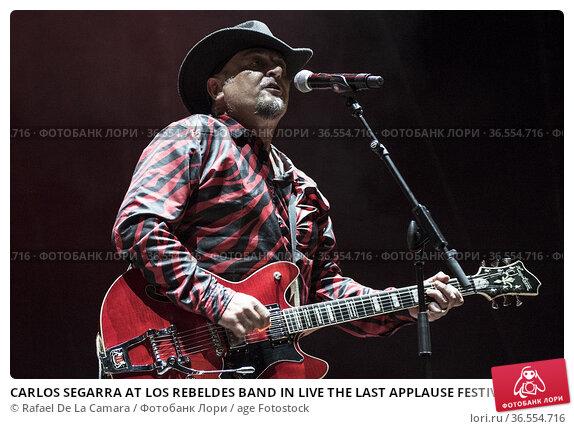 CARLOS SEGARRA AT LOS REBELDES BAND IN LIVE THE LAST APPLAUSE FESTIVAL... Редакционное фото, фотограф Rafael De La Camara / age Fotostock / Фотобанк Лори