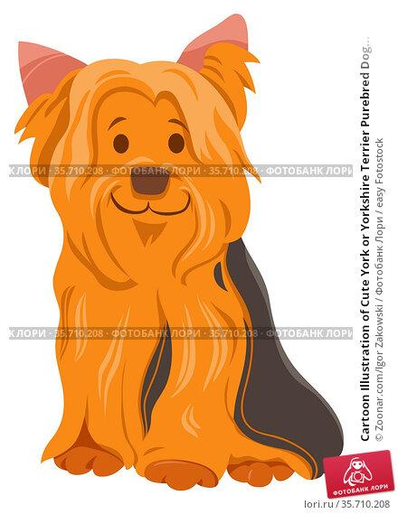 Cartoon Illustration of Cute York or Yorkshire Terrier Purebred Dog... Стоковое фото, фотограф Zoonar.com/Igor Zakowski / easy Fotostock / Фотобанк Лори