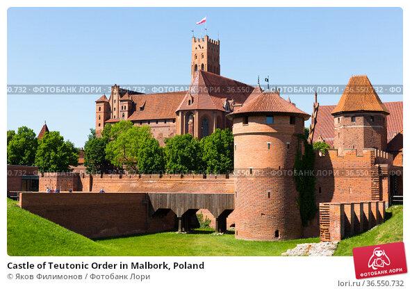 Castle of Teutonic Order in Malbork, Poland. Стоковое фото, фотограф Яков Филимонов / Фотобанк Лори