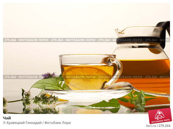 Чай, фото № 279264, снято 22 июля 2005 г. (c) Кравецкий Геннадий / Фотобанк Лори