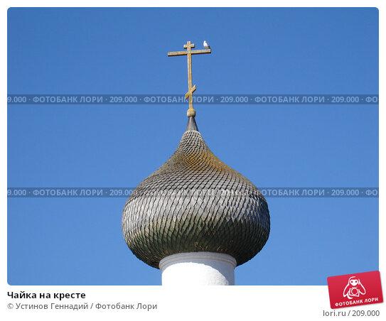 Чайка на кресте, фото № 209000, снято 17 июля 2005 г. (c) Устинов Геннадий / Фотобанк Лори