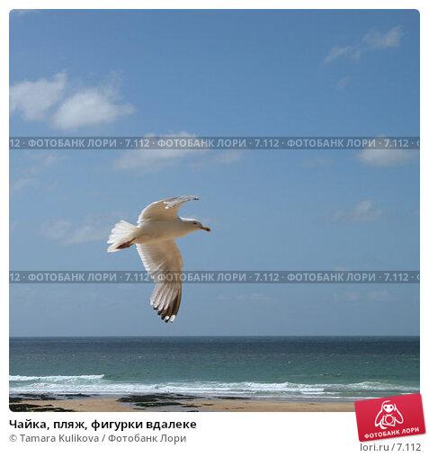 Купить «Чайка, пляж, фигурки вдалеке», фото № 7112, снято 9 августа 2006 г. (c) Tamara Kulikova / Фотобанк Лори