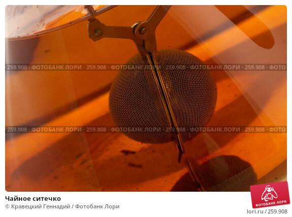 Чайное ситечко, фото № 259908, снято 6 декабря 2005 г. (c) Кравецкий Геннадий / Фотобанк Лори
