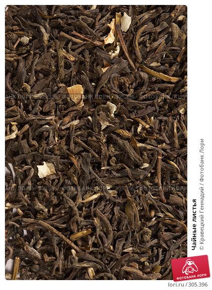 Чайные листья, фото № 305396, снято 5 сентября 2005 г. (c) Кравецкий Геннадий / Фотобанк Лори