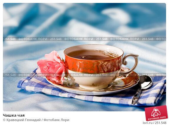 Чашка чая, фото № 251548, снято 3 августа 2005 г. (c) Кравецкий Геннадий / Фотобанк Лори