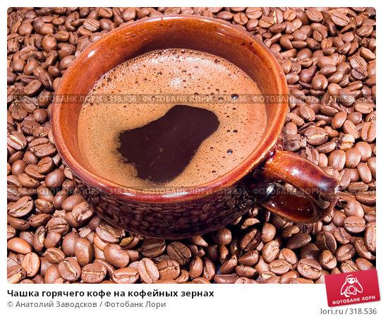 Чашка горячего кофе на кофейных зернах, фото № 318536, снято 12 апреля 2007 г. (c) Анатолий Заводсков / Фотобанк Лори