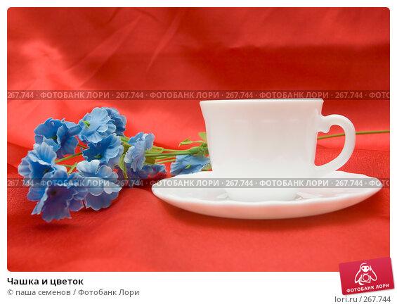 Чашка и цветок, фото № 267744, снято 10 апреля 2008 г. (c) паша семенов / Фотобанк Лори