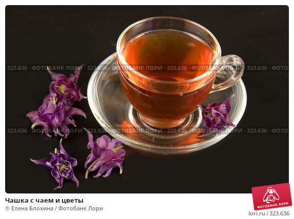Чашка с чаем и цветы, фото № 323636, снято 7 июня 2008 г. (c) Елена Блохина / Фотобанк Лори
