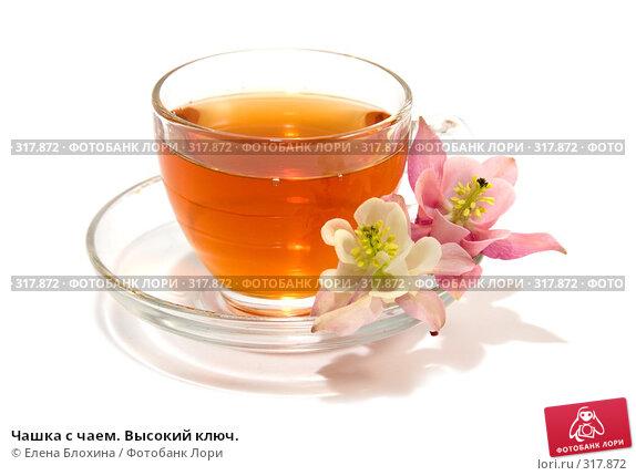 Купить «Чашка с чаем. Высокий ключ.», фото № 317872, снято 7 июня 2008 г. (c) Елена Блохина / Фотобанк Лори