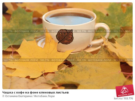Чашка с кофе на фоне кленовых листьев, фото № 103776, снято 25 мая 2017 г. (c) Останина Екатерина / Фотобанк Лори