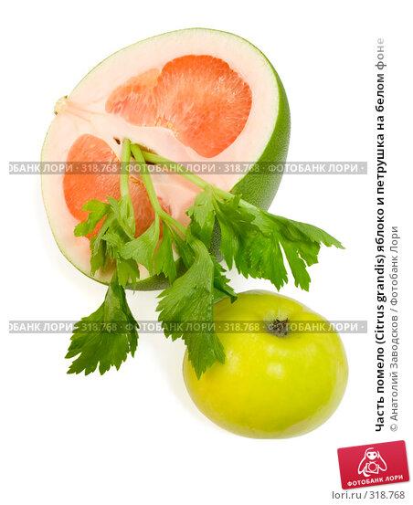 Часть помело (Citrus grandis) яблоко и петрушка на белом фоне, фото № 318768, снято 3 февраля 2007 г. (c) Анатолий Заводсков / Фотобанк Лори