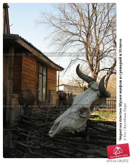 Череп на плетне Музея мифов и суеверий в Угличе, фото № 26072, снято 29 апреля 2006 г. (c) Fro / Фотобанк Лори