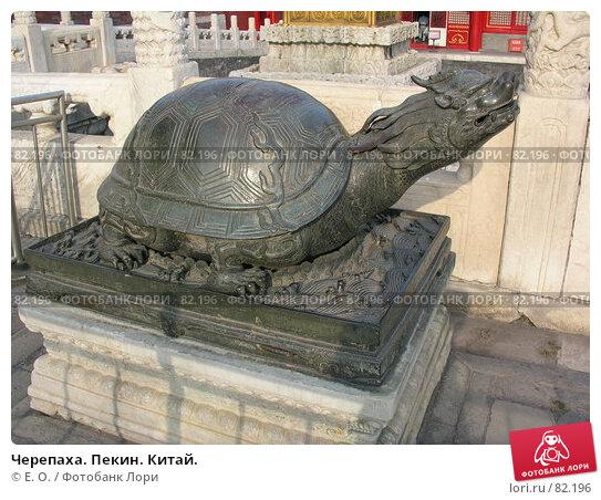 Купить «Черепаха. Пекин. Китай.», фото № 82196, снято 6 сентября 2007 г. (c) Екатерина Овсянникова / Фотобанк Лори