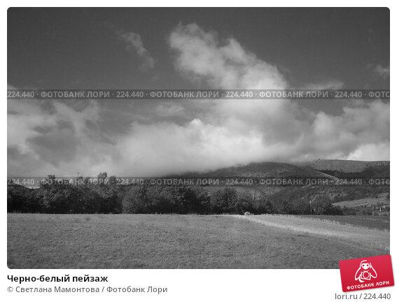 Купить «Черно-белый пейзаж», фото № 224440, снято 5 января 2005 г. (c) Светлана Мамонтова / Фотобанк Лори