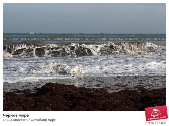 Чёрное море, фото № 77804, снято 18 сентября 2006 г. (c) Alla Andersen / Фотобанк Лори